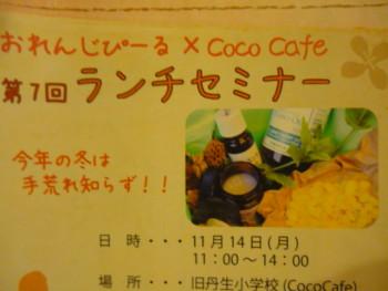 ランチセミナー11月(おれんじぴーる&Coco cafeさん)